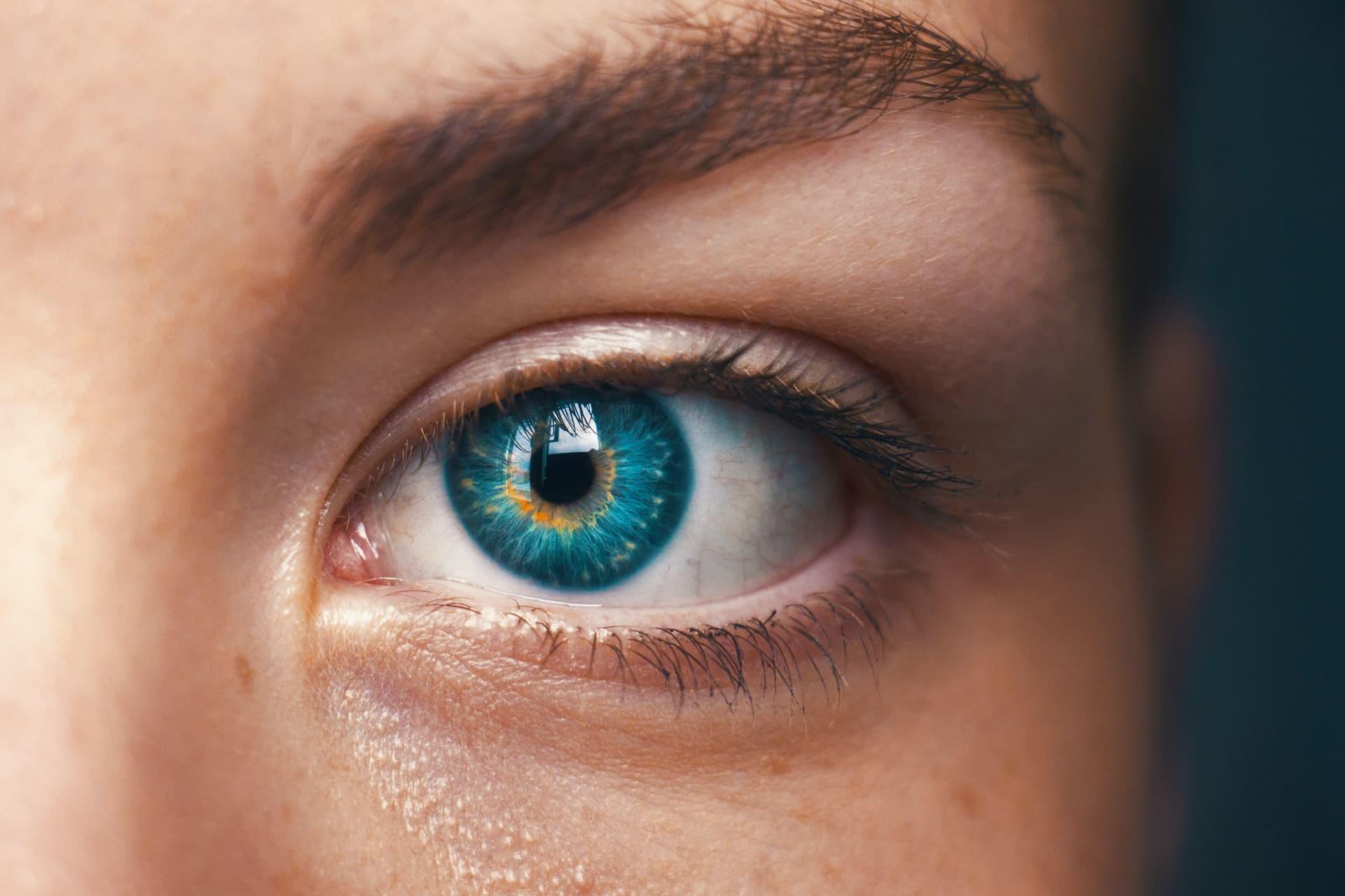 Augenbrauenlifting Test Vergleich
